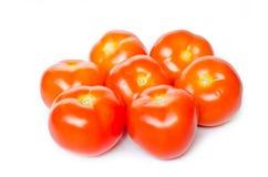 Gruppo di pomodori su priorità bassa bianca Immagini Stock