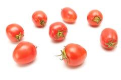 Gruppo di pomodori su priorità bassa bianca Fotografia Stock