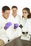 Gruppo di ricerca medico Immagini Stock