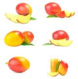 Gruppo di rosso del mango su un fondo bianco Fotografia Stock Libera da Diritti