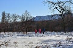 Gruppo di sciatori nella foresta di inverno Immagini Stock Libere da Diritti