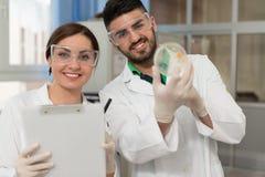 Gruppo di scienziati che lavorano al laboratorio Fotografie Stock