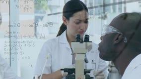 Gruppo di scienziato che studia insieme e di ricerca di conduzione stock footage