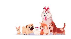 Gruppo di seduta sveglia dei cani isolato sul fondo bianco che indossa simbolo asiatico dell'osso di Santa Hat And Holding Decora royalty illustrazione gratis