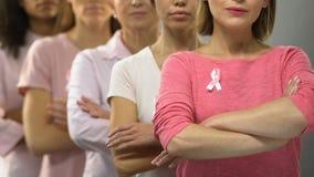 Gruppo di signore con i nastri rosa che raccomandano diagnosi tempestiva di cancro al seno stock footage