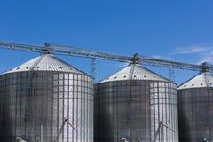 Gruppo di silos di grano nell'Uruguay con cielo blu Immagini Stock Libere da Diritti