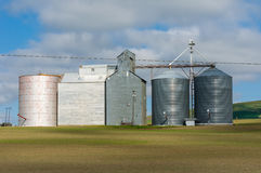 Gruppo di silos di stoccaggio del grano Fotografia Stock