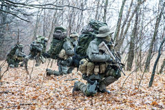 Gruppo di soldati di jagdkommando Fotografie Stock Libere da Diritti