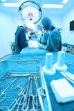 Gruppo di stanza in funzione dell'ambulatorio veterinario Fotografie Stock