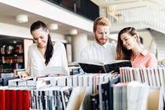 Gruppo di studenti che studiano nella biblioteca Immagine Stock