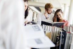 Gruppo di studenti che studiano nella biblioteca Immagini Stock Libere da Diritti