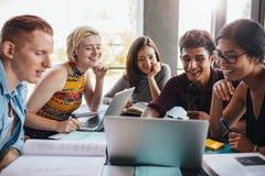 Gruppo di studenti che studiano nella biblioteca Fotografie Stock