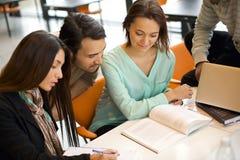 Gruppo di studenti che studiano in una biblioteca Fotografie Stock