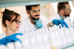 Gruppo di studenti di chimica che lavorano nel laboratorio Immagini Stock Libere da Diritti