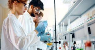 Gruppo di studenti di chimica che lavorano nel laboratorio Fotografia Stock Libera da Diritti