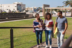 Gruppo di studenti in città universitaria Immagine Stock