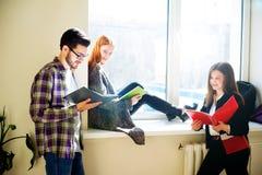 Gruppo di studenti di college Fotografia Stock