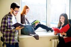 Gruppo di studenti di college Immagini Stock