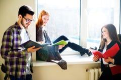 Gruppo di studenti di college Fotografia Stock Libera da Diritti
