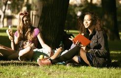 Gruppo di studenti su erba, prepaing all'esame Fotografia Stock Libera da Diritti