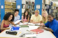 Gruppo di studenti universitari che lavorano nella libreria Immagini Stock Libere da Diritti
