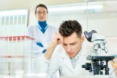 Gruppo di talento degli scienziati sul lavoro immagini stock