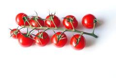 Gruppo di terminali dei pomodori di ciliegia Fotografia Stock Libera da Diritti