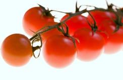 Gruppo di terminali dei pomodori di ciliegia rossi Fotografia Stock