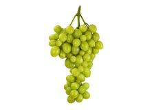Gruppo di terminali dell'uva Fotografie Stock