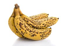 Gruppo di terminali delle banane mature eccessive Fotografia Stock Libera da Diritti