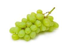 Gruppo di terminali verde dell'uva Fotografia Stock Libera da Diritti