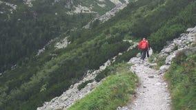 Gruppo di trekking dei turisti in alte montagne di Tatra stock footage