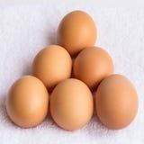 Gruppo di uova fresche Fotografie Stock