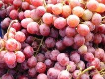 Gruppo di uva rossa fresca Fotografie Stock