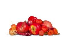 Gruppo di vari frutti Fotografie Stock Libere da Diritti