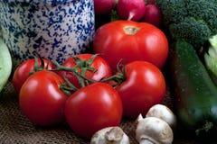 Gruppo di verdure Immagine Stock