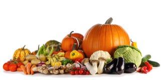 Gruppo di verdure del raccolto fotografia stock