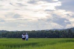 Gruppo di viaggiatore sul giacimento del riso, nordico della Tailandia fotografia stock libera da diritti