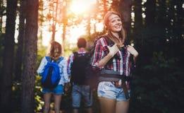 Gruppo di viandanti backpacking che vanno per il trekking della foresta Fotografia Stock Libera da Diritti
