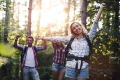 Gruppo di viandanti backpacking che vanno per il trekking della foresta Immagini Stock