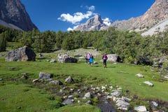 Gruppo di viandanti che camminano nella regione selvaggia Immagini Stock Libere da Diritti