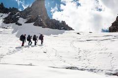 Gruppo di viandanti in montagne Fotografia Stock Libera da Diritti