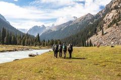 Gruppo di viandanti in montagne Fotografie Stock Libere da Diritti