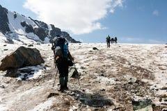 Gruppo di viandanti in montagne di Tien Shan Fotografia Stock Libera da Diritti