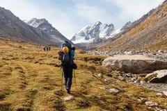 Gruppo di viandanti in montagne di Tien Shan, Kirghizistan Fotografia Stock Libera da Diritti