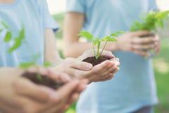 Gruppo di volontario con il germoglio per crescere immagine stock