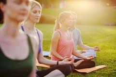 Gruppo di yoga sui precedenti di erba verde Fotografia Stock