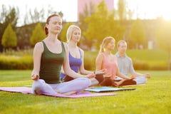 Gruppo di yoga sui precedenti di erba verde Immagine Stock