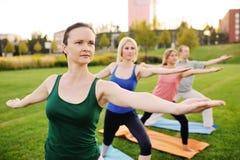 Gruppo di yoga sui precedenti di erba verde Immagini Stock