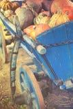 Gruppo di zucche variopinte sul canestro rurale Fotografia Stock